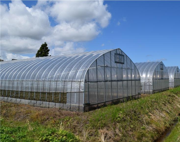 農業用温室・ハウス